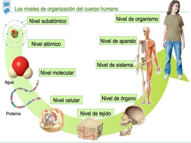 El blog de Antonio José Miralles