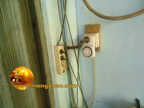 Stop kontak listrik untuk menghidupkan pompa pengeluaran pupuk organik cair