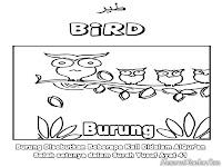 Gambar Burung Yang Disebutkan Dalam Surah Yusuf