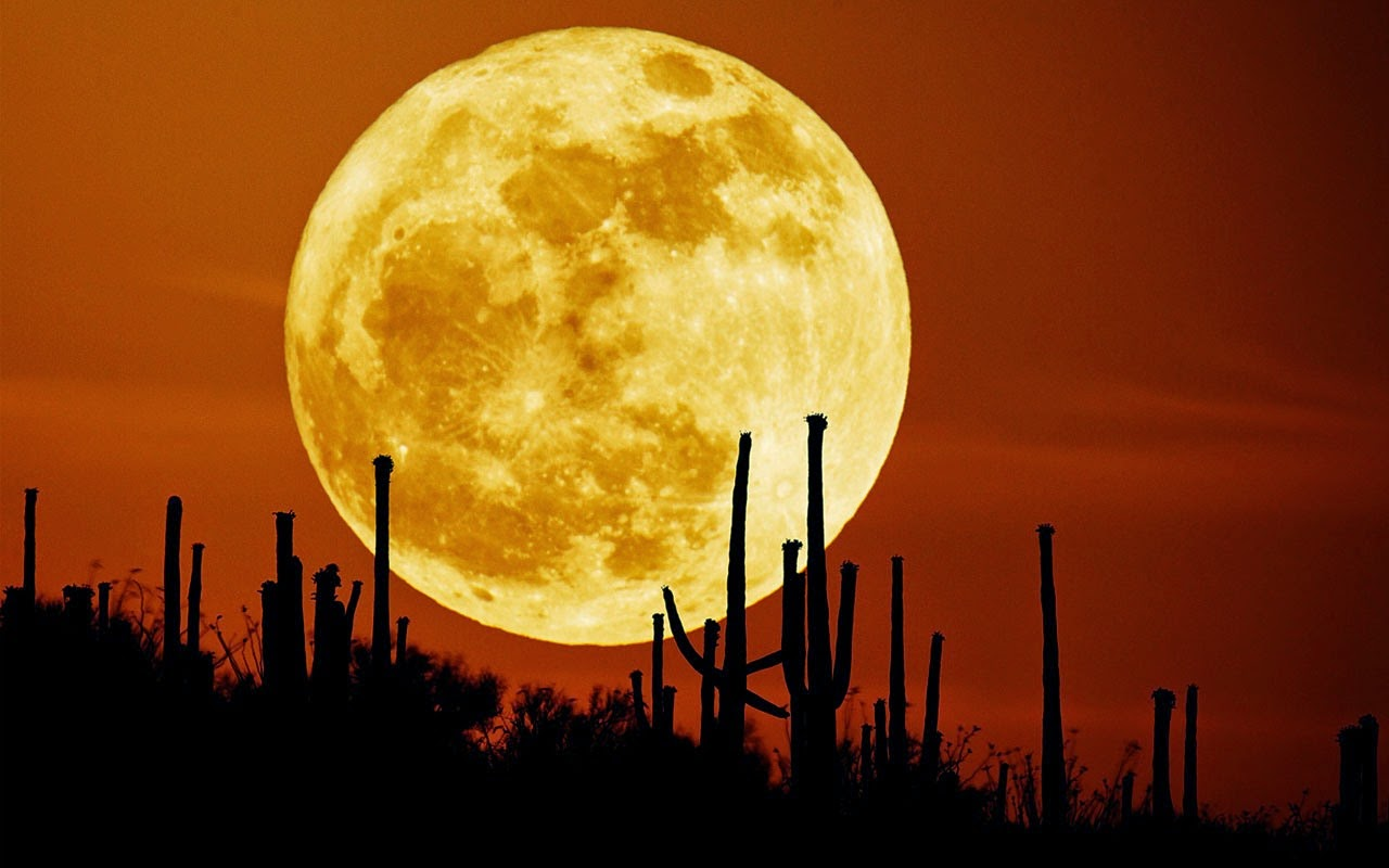 Super Moon 2014 wallpapers