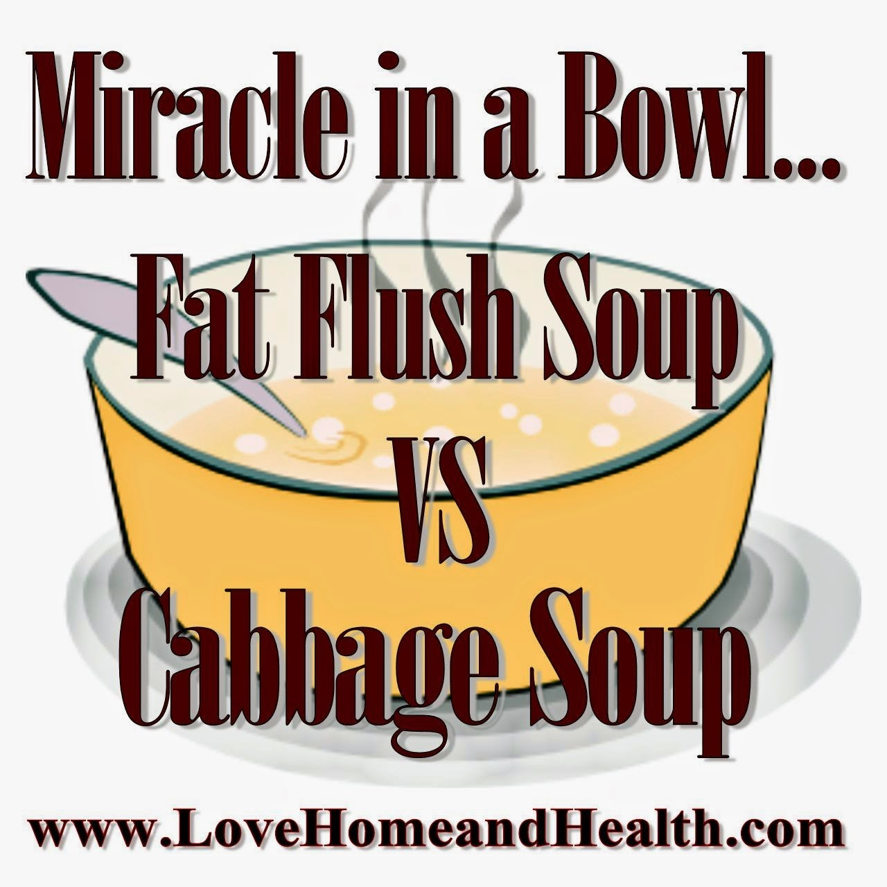 Miracle in a Bowl ... Fat Flush Soup vs. Cabbage Soup