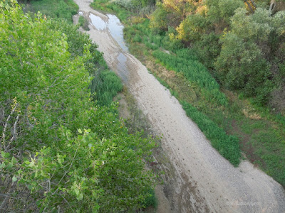 Looking Down at the Salinas River to the North, on Vineyard Dr., © B. Radisavljevic