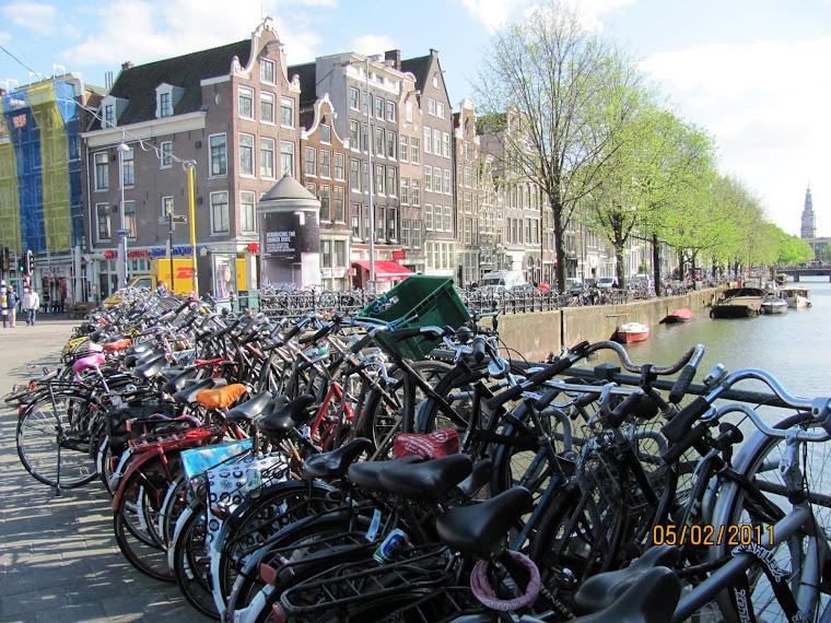Bikes Everywhere!