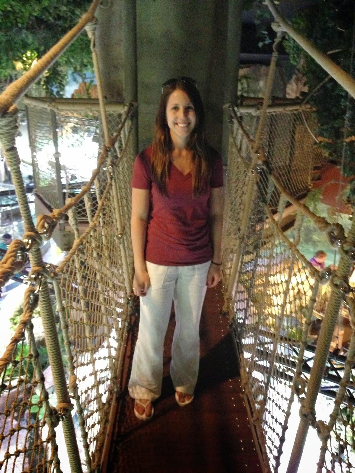 dubai aquarium underwater zoo canopy