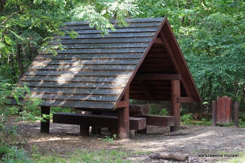 drewniany domek Warszawa Wola park las alejki tory kolej Trasa Toruńska drzewa zieleń plac zabaw