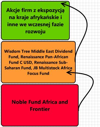 Czy warto zainwestować w Noble Fund Africa and Frontier