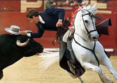 cheval espagnol corrida