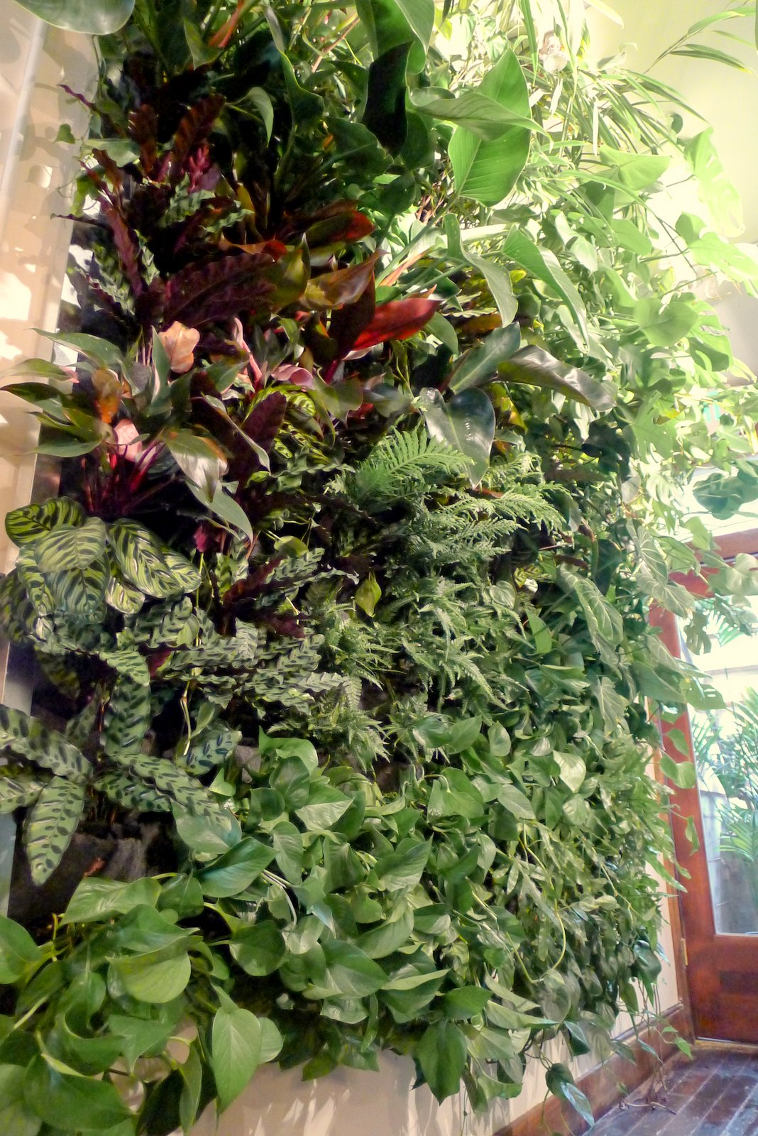 Plants On Walls Vertical Garden Systems Population Hair