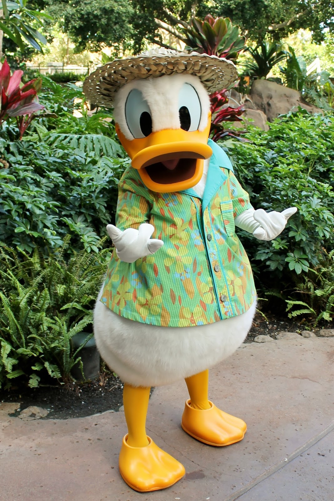 unofficial disney character hunting guide  disney u0026 39 s aulani