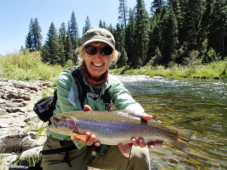 north fork yuba river adventures fishing report 7 12