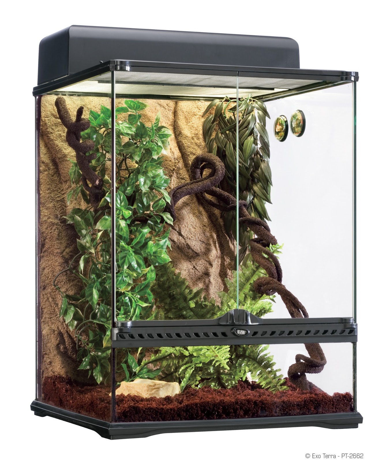 kucing4sale exo terra terrarium. Black Bedroom Furniture Sets. Home Design Ideas