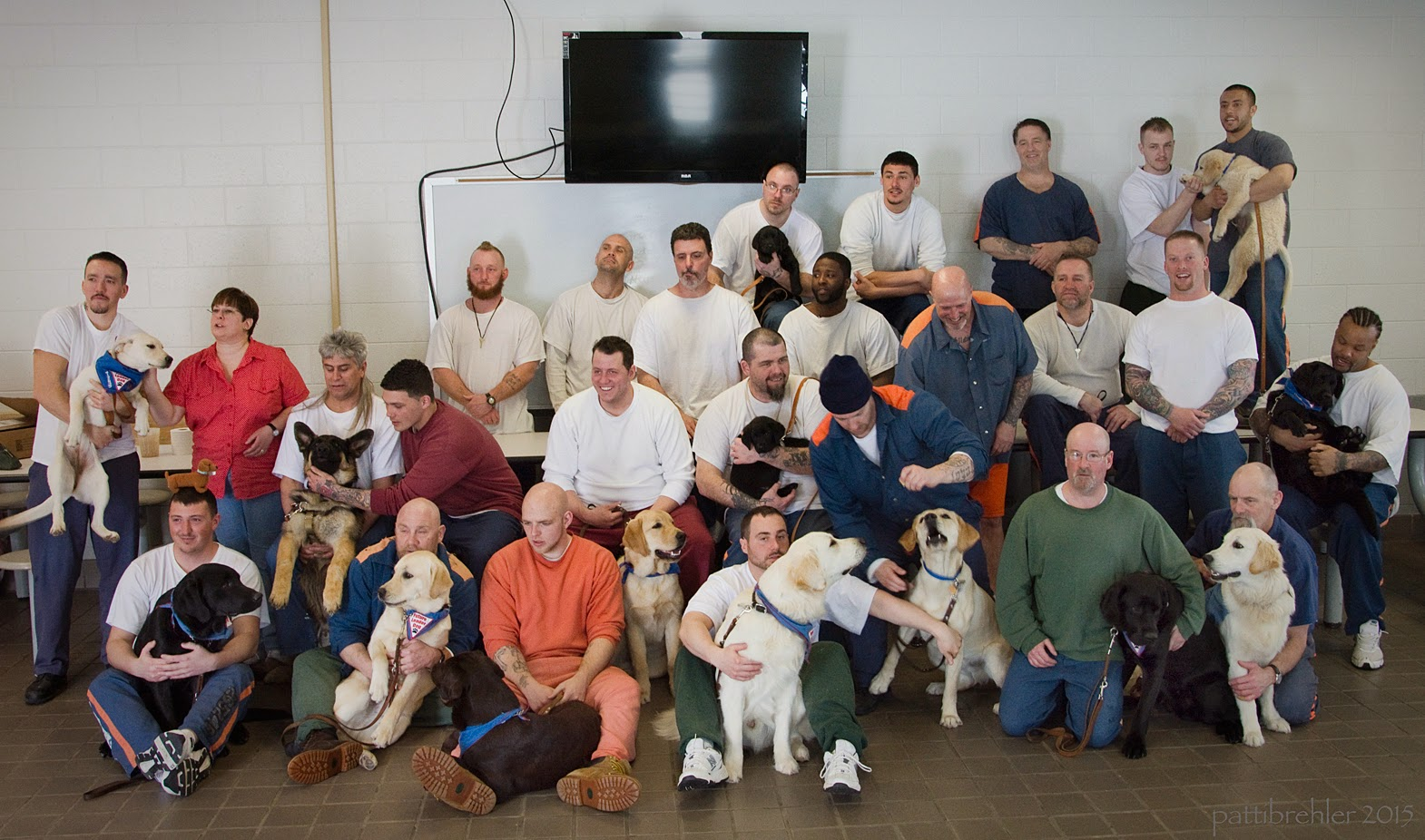A group shot of 25 men and one women, with 13 puppies. There are four overlapping rows, the first row are ment kneeling or sitting on the floor with 7 puppies, the second row is six men and one woman (she is second from the left) standing or sitting behind the first row holding three puppies, the third row is eight men, mostly standing behind the 2nd row to the right, with on man sitting on the far right holding one puppy, the last row are five men standing on chairs behind the rest with the man on the far right holding a puppy. There is a big flat screen television on the white brick wall behind the group.