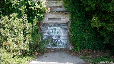 Fotografia di serranda con graffiti
