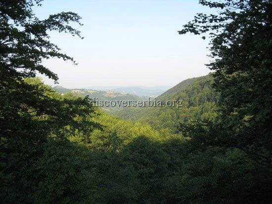 Mountain Povlen