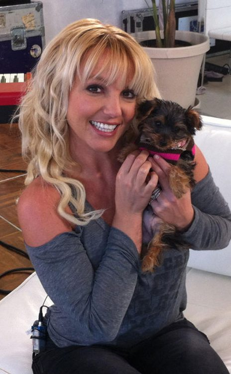 10 Awesome Pics From Britney Spears Twitter!