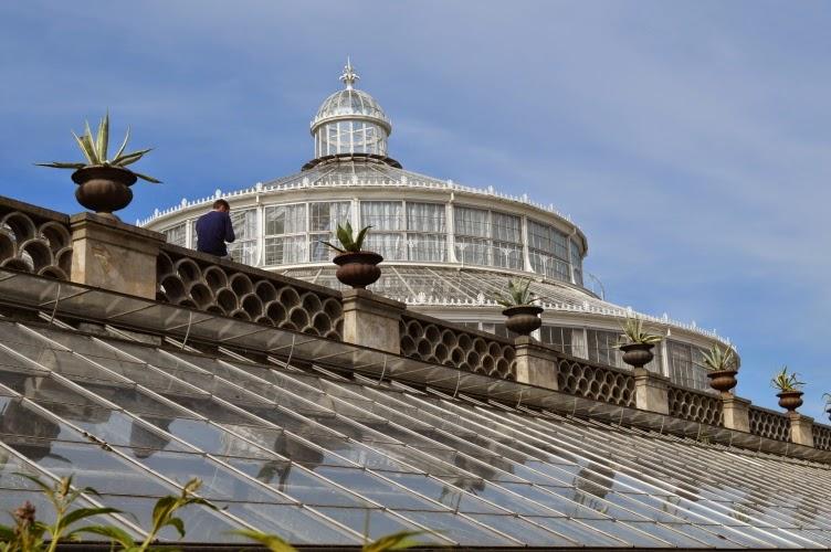 greenhouse, kodaň, copenhagen, denmark, dánsko, skleník, garden, zahrada