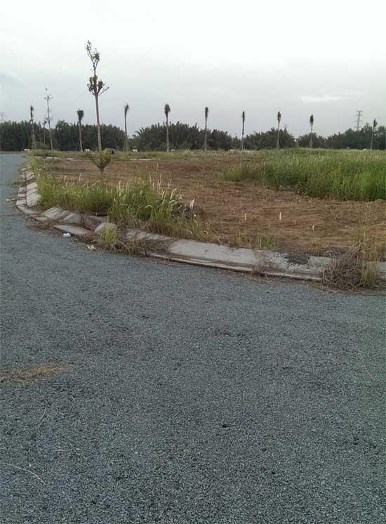 Đất nền biệt thự ven sông, cách cầu Nguyễn Tri Phương 10 phút, giá chỉ 7, 7tr/ m2
