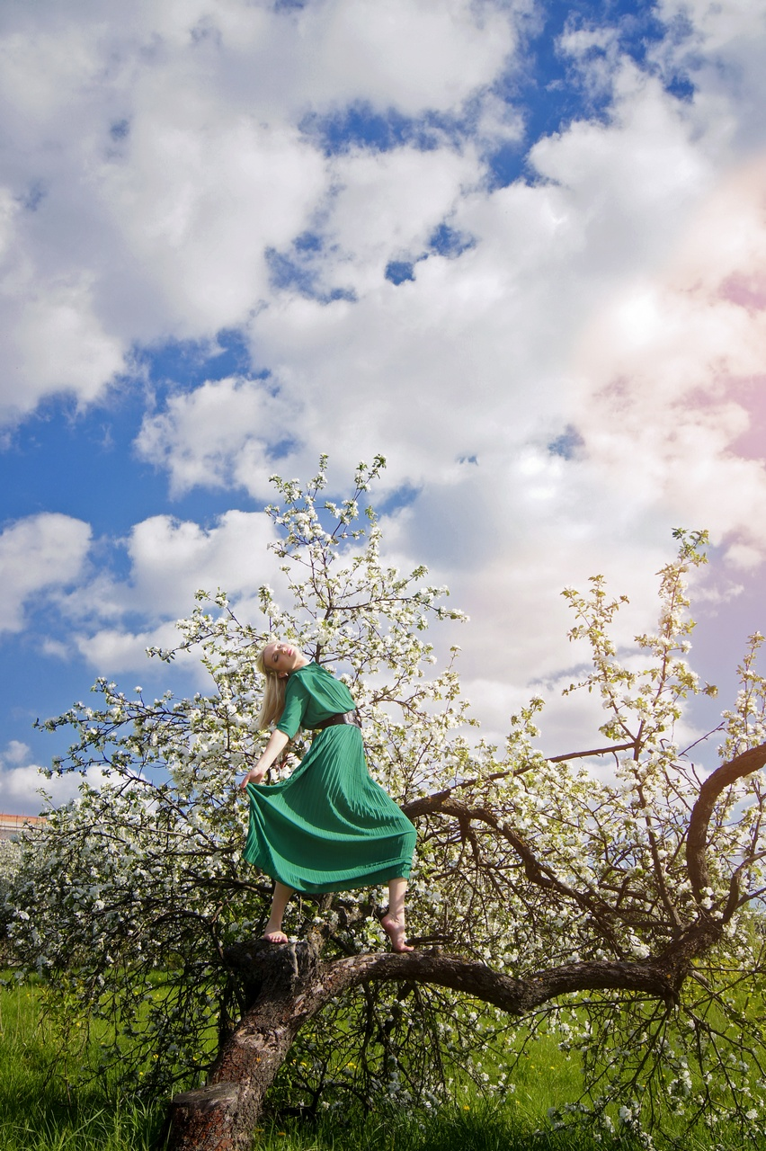 фотосессия девушки на цветущей яблони