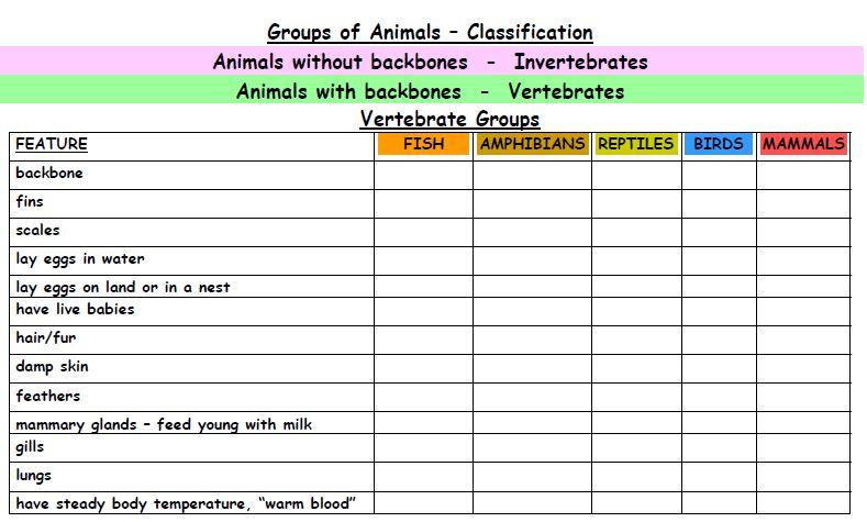 Animal Classification Chart Vertebrates Pictures to Pin on – Vertebrates and Invertebrates Worksheets