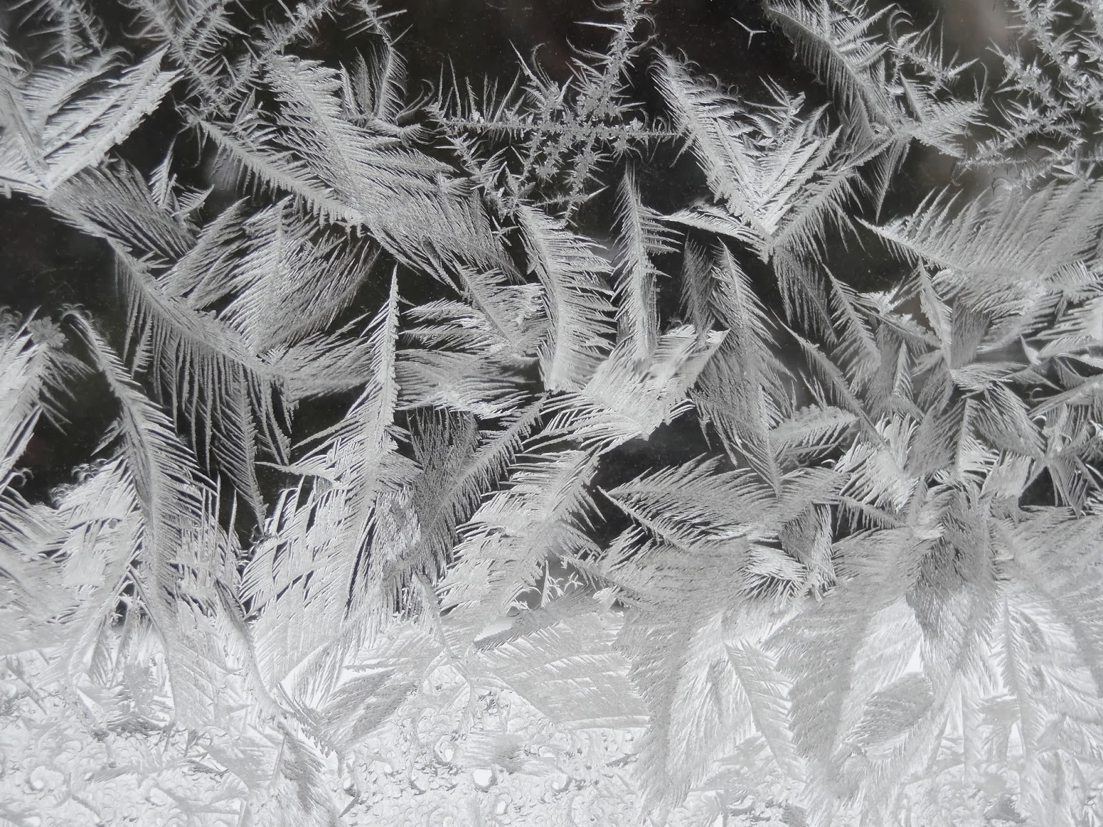 Image result for breath frozen glass