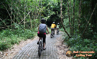 Ride In Middle Bamboo Forest - Bali Countryside Cycling Tour Tracks
