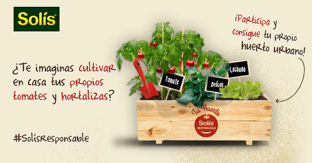 #SolísResponsable : Cultivo y Consumo local + Sorteo de huertos urbanos