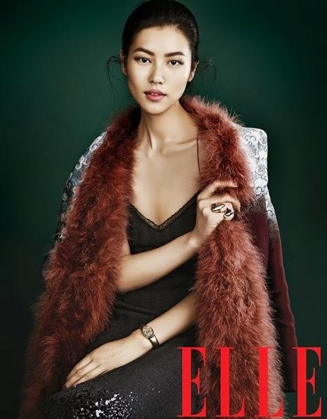 Louis Vuitton AW 2013 Brown furry coat