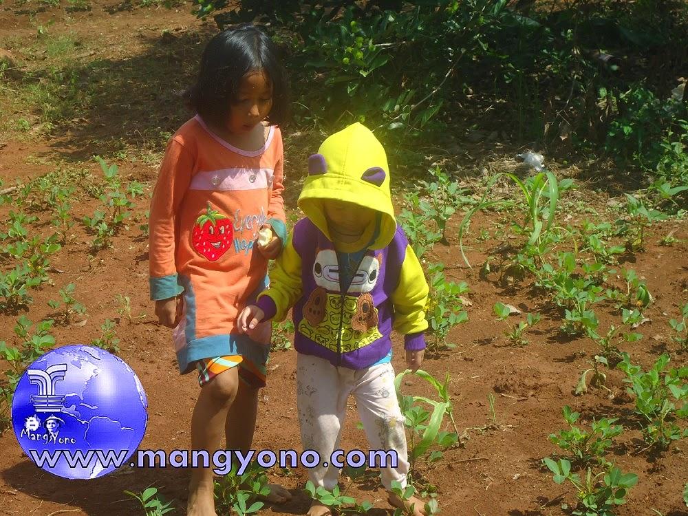Wisata bersama keluarga ke kebun keluarga