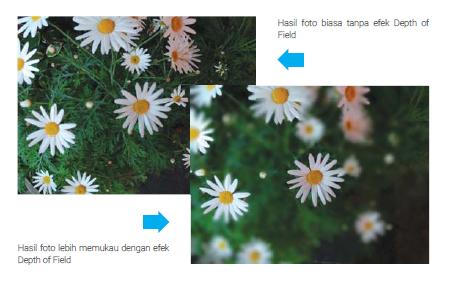 Depth of Field - Ambil foto seperti menggunakan kamera DSLR profesional