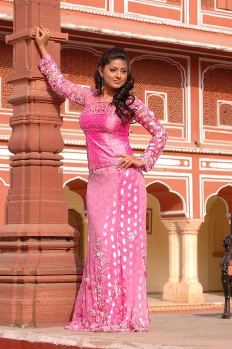 bollywood, tollywood, hot, Sneha, , in, saree, photo, gallery