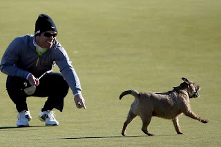 Paul Casey Professional Golf Star Biography, New Pictures And Wallpapers In 2013.