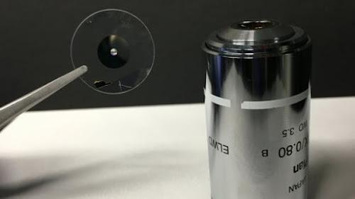 Nova lente promete imagens de câmera profissional no seu celular
