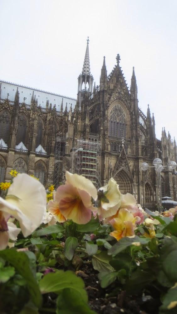 Kölner Dom im Frühling