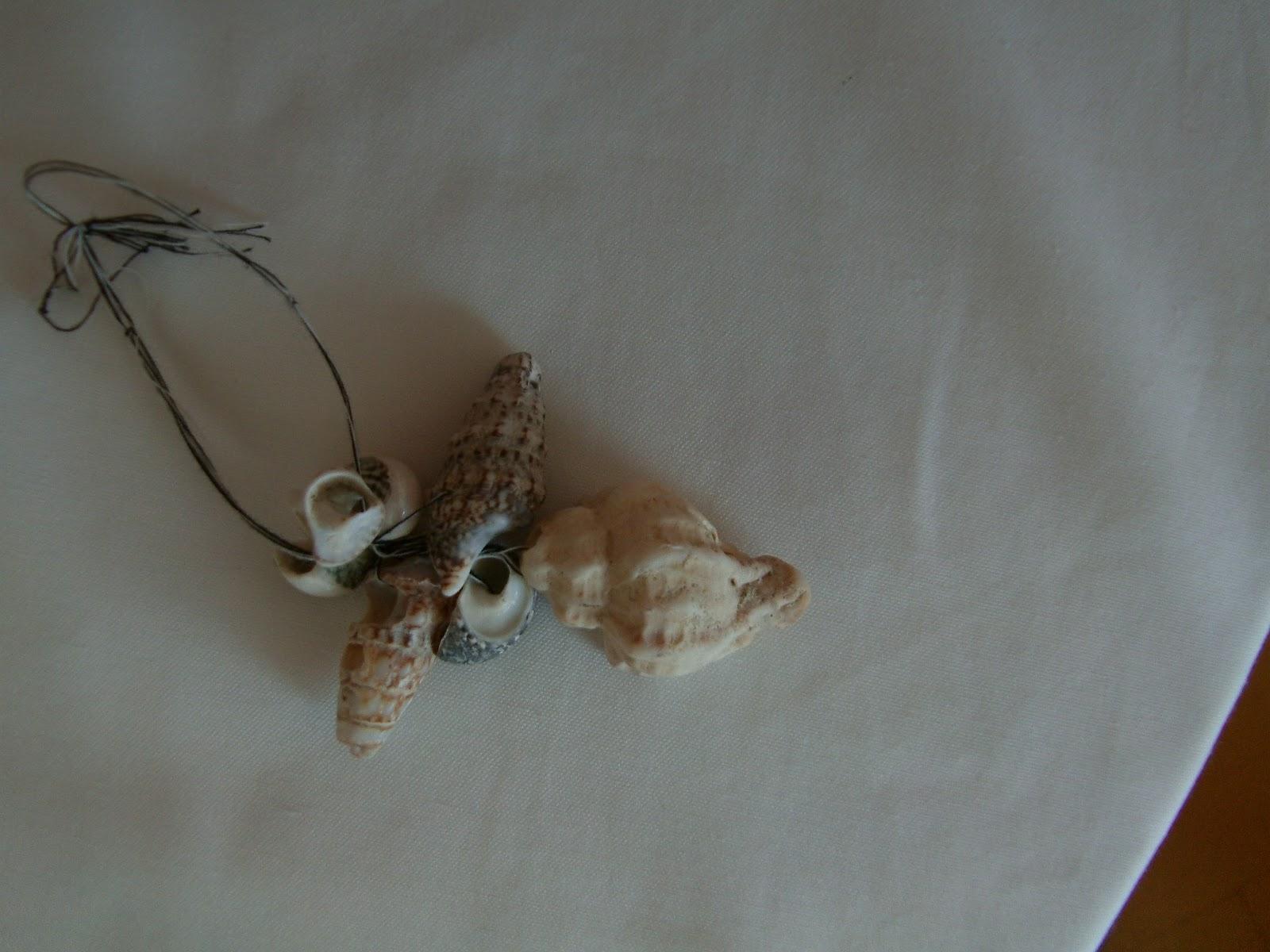 deniz kabuklarından süs eşyası