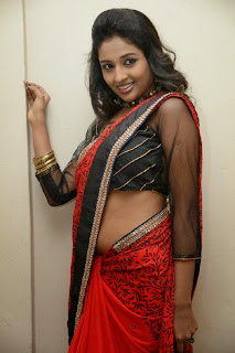Actress Amitha Rao Pictures in Saree at Chandamama Kathalu Movie Press Meet 0040