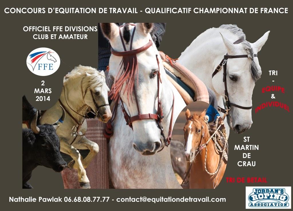 CONCOURS  QUALIFICATIF CHAMPIONNAT DE FRANCE 2014