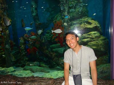 Siam Ocean World - Bangkok Photo 9