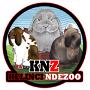 Tips info Peternakan Kelinci Holland Lop | Kelinci Hias |  Anggora | Murah TASIKMALAYA