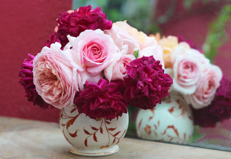 """Résultat de recherche d'images pour """"bouquet de roses photo"""""""