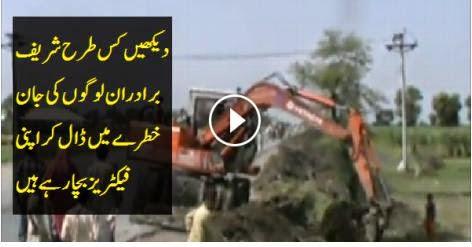 VIDEO, pakistani scandals, nawaz sharif, Shahbaz Sharif, flood people,