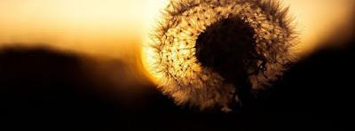 Magnifique Couverture Facebook Lever de Soleil