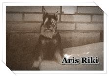 http://hairyhope.blogspot.cz/p/aris-riki.html