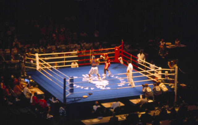 La batalla de los sexos llega al ring