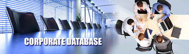 Corporate Database Provider