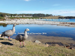 Yoga & Art Retreats Tasmania