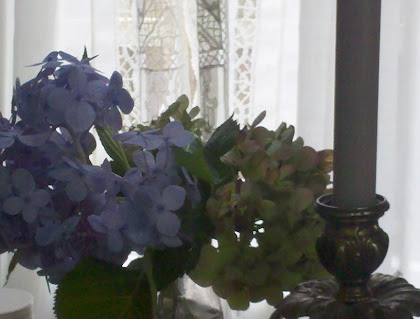 Hydrangeas & new Curtains