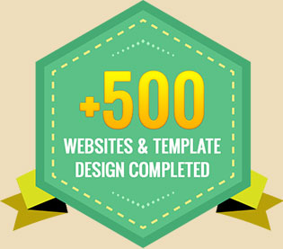 + 500 Websites in Portfolio