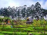 Lokasi Dusun Bambu yang In dah dengan Kesan Alam