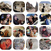 In Memory of the 373 Children Killed in Gaza