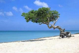 Paisajes con Playas, parte 2